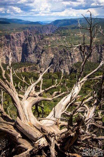 Black Canyon North Vista