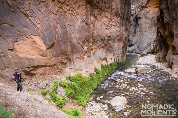 A traveler hiking The Narrows arrives at the Wall Street section.
