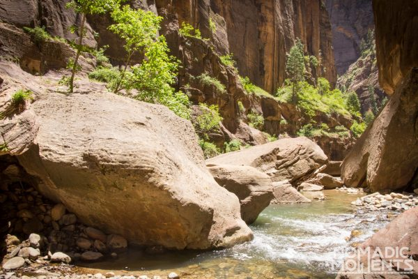 The Virgin River is the path when hiking The Narrows.