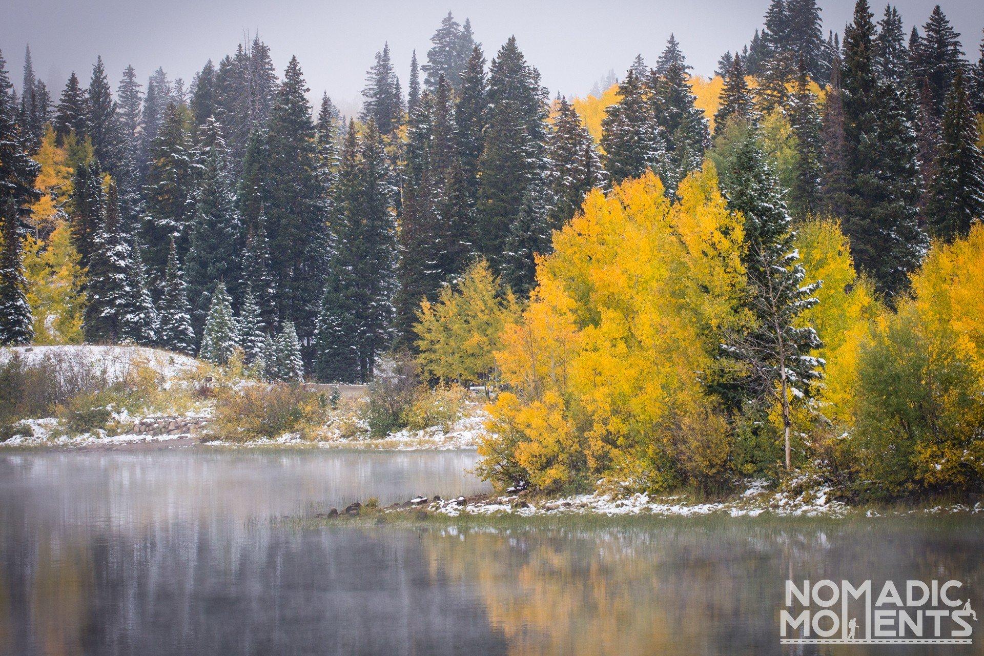 Icy Autumn