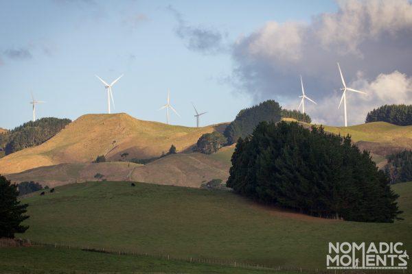New Zealand Power