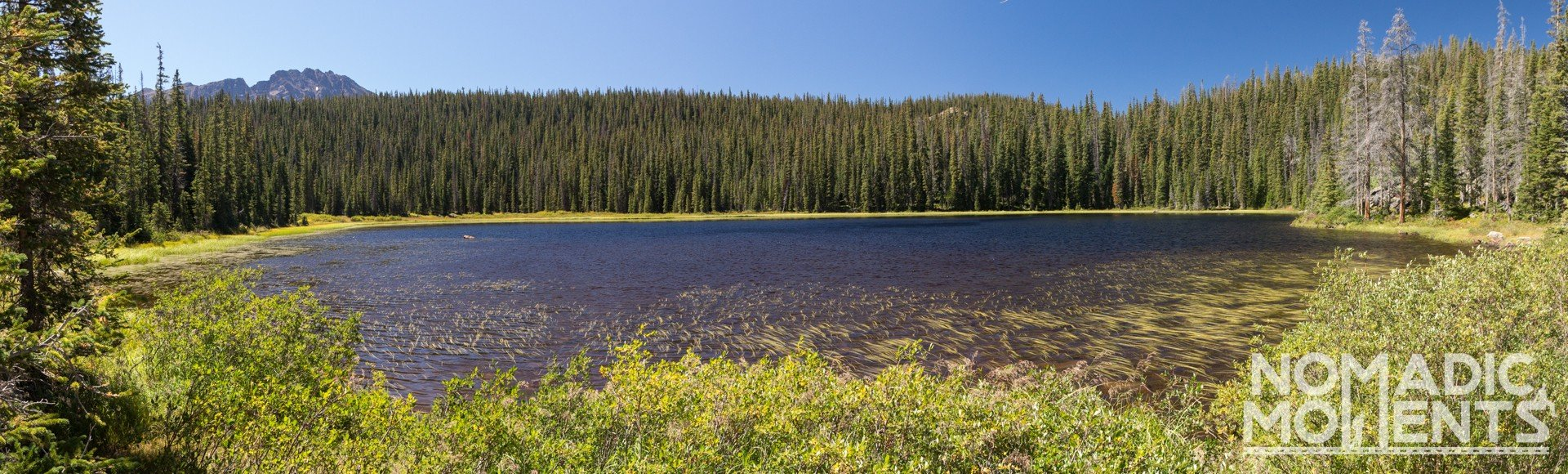 Southern Eaglesmere Lake