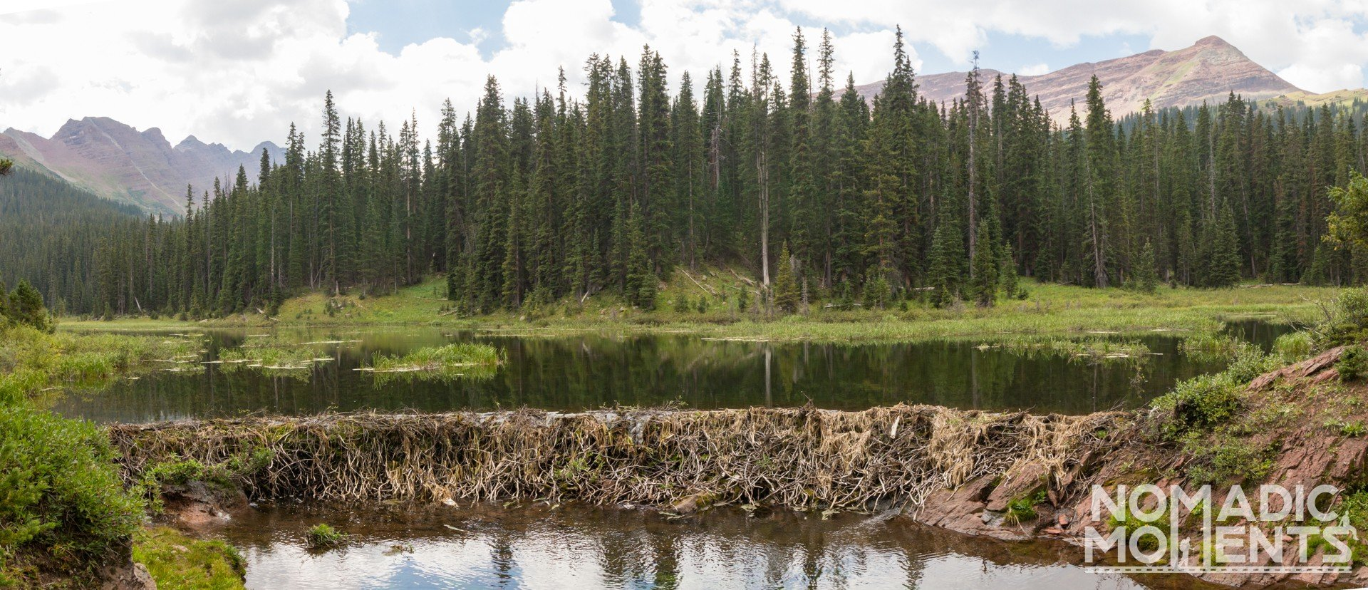 A beaver dam on Colorado's Four Pass Loop.