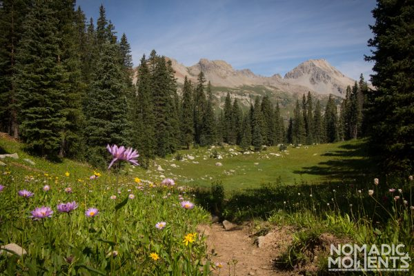 The subalpine fields of the Four Pass Loop in Colorado.