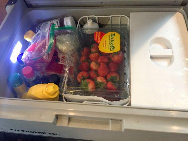 Dometic CFX 65DZ freezer/fridge