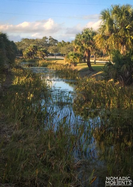 A swampy waterway in the Savannas Recreation Area