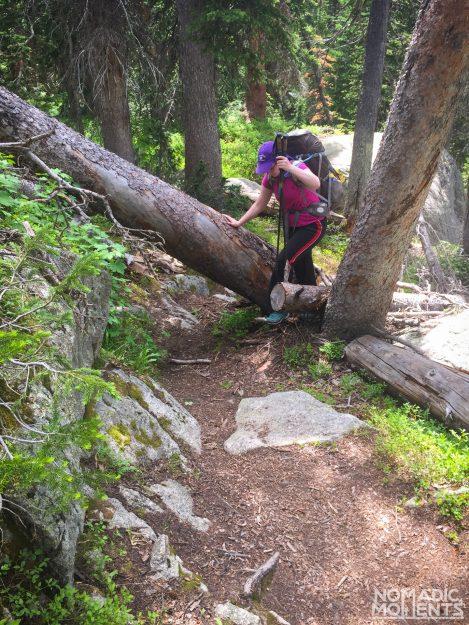A backpacker climbs over a fallen tree