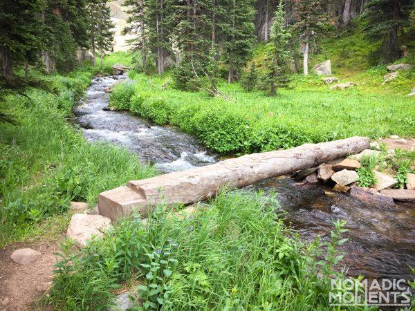 Log Bridge on Crater Lake Trail