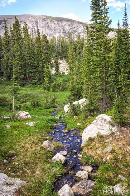 A wet Beaver Creek trail.