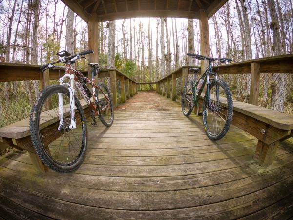 Bikes on a Florida board walk in the Cypress groves.