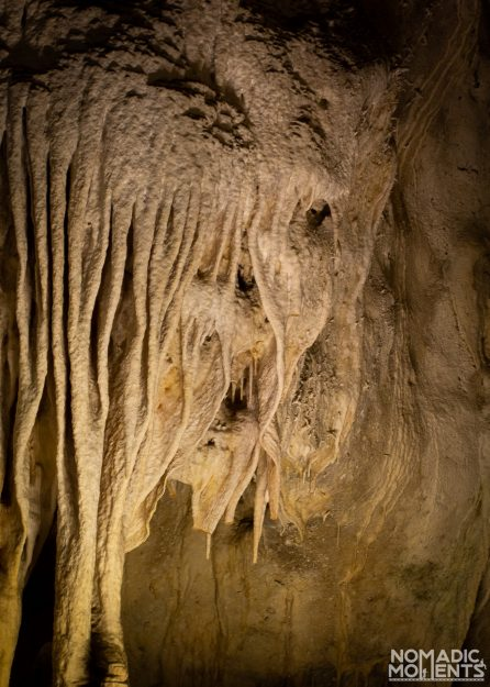 The guide to Carlsbad Caverns and discovering the unique formations hidden within