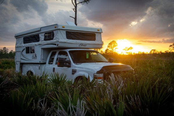 Highlands Hammock Wilderness Campsite
