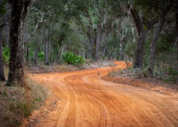 A red dirt road to free camping in Florida.
