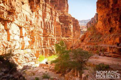 Hualapai Canyon