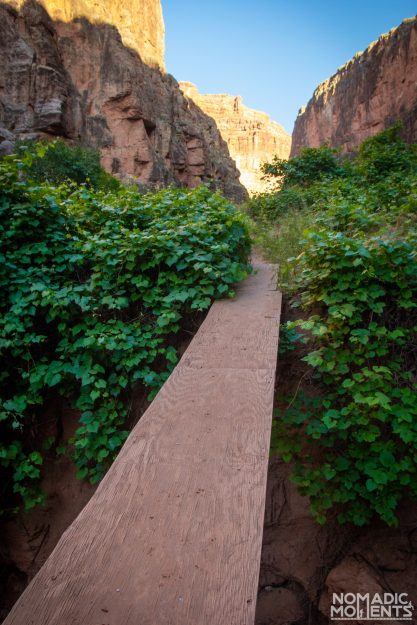 A Havasupai Plywood Bridge