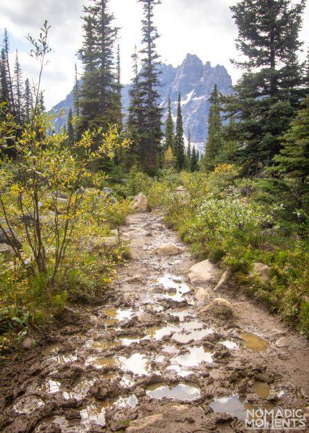 Canadian Rocky Mud