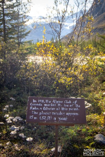 1911 Robson Glacier Sign