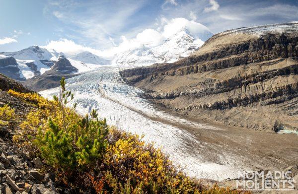Autumn-Color on Snowbird Pass Trail