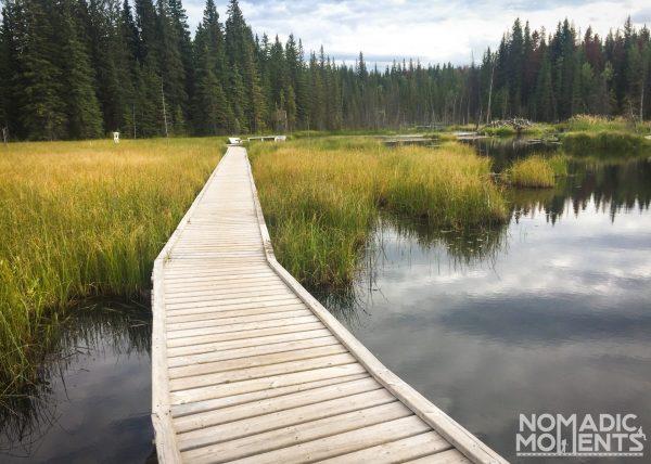 Beaver Boardwalk Trail
