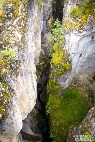 Depths of Maligne Canyon