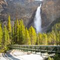 Takakkaw Falls Bridge