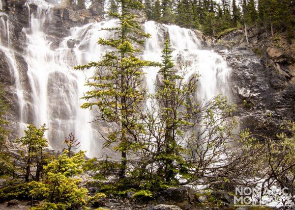 Hiking Tangle Creek Falls