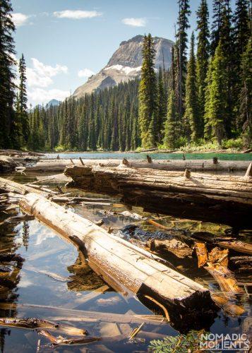 Hidden Lake & Wapta Mountain