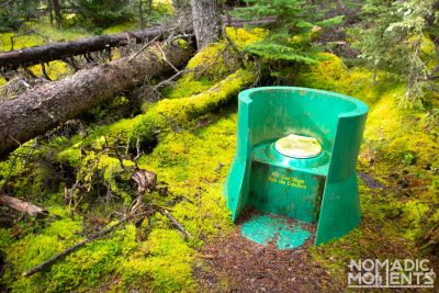 Toilet of the Forest