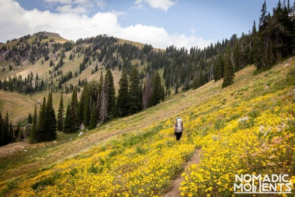 Backpacking via the Phillip's Pass - Moose Creek Basin