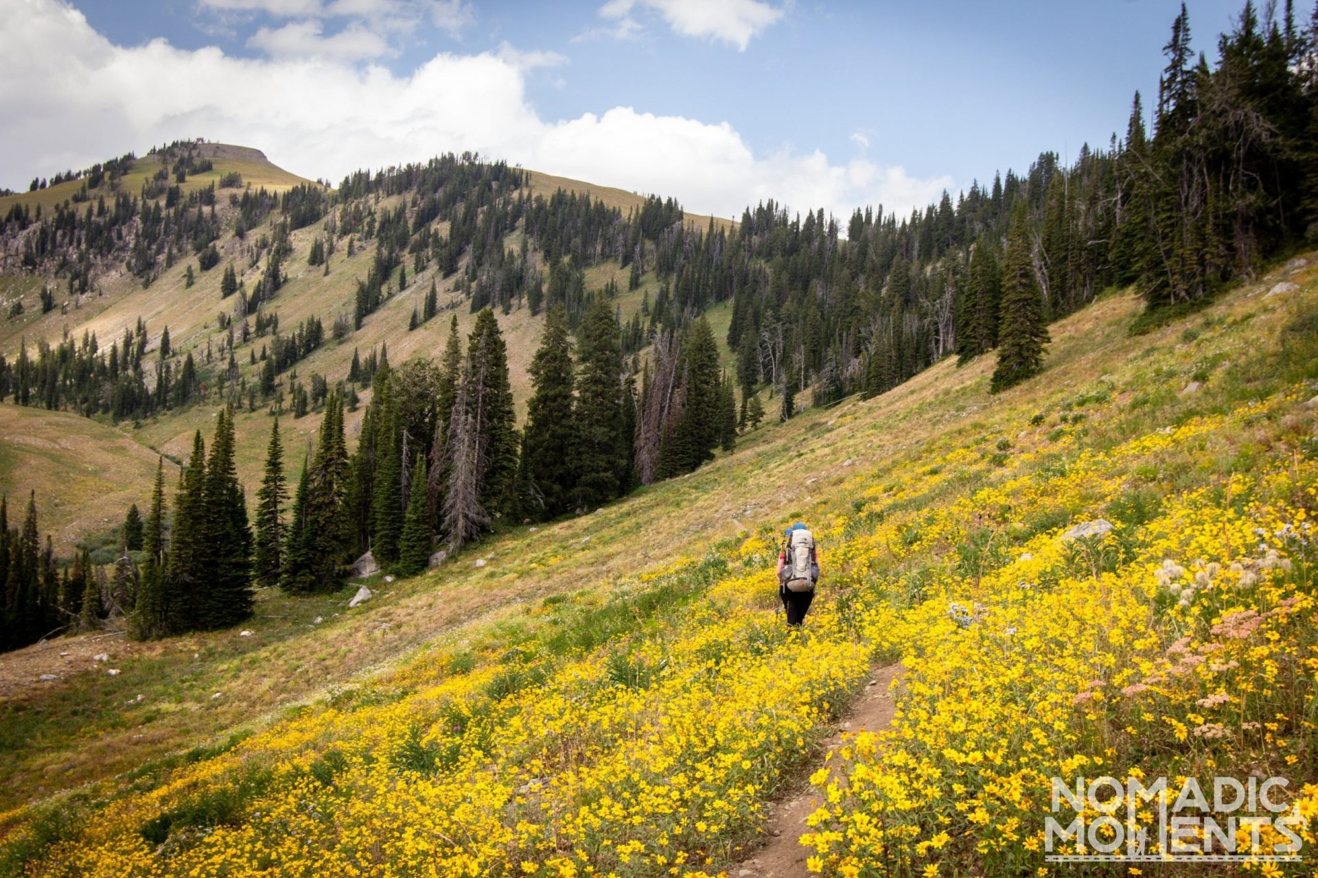 Backpacking via the Phillip's Pass - Moose Creek Basin