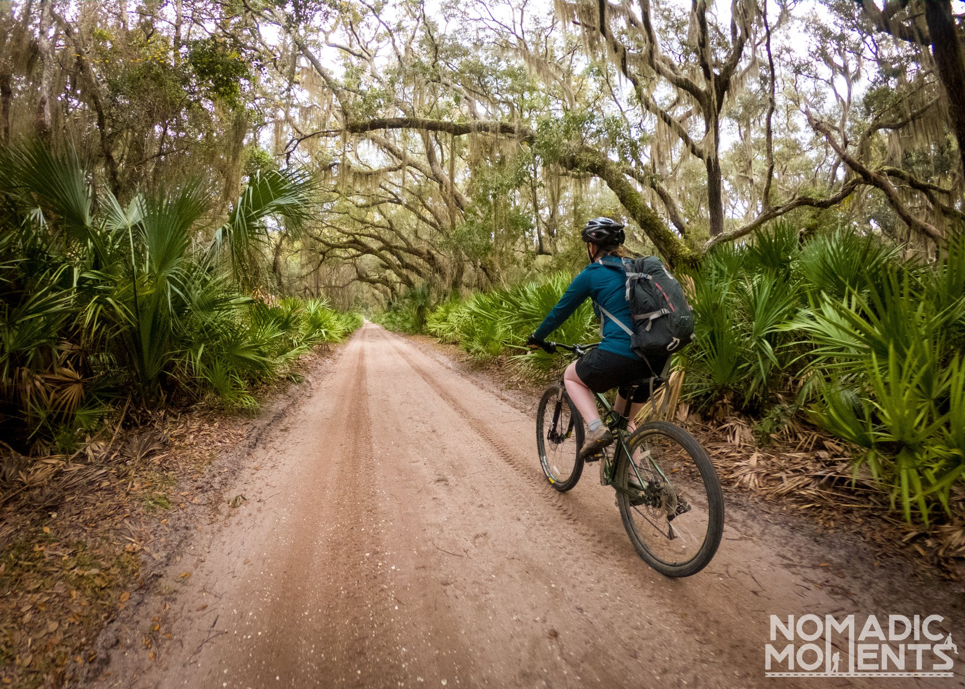 Biking Cumberland Island