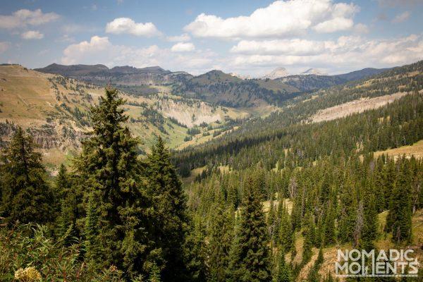 Moose Creek Basin