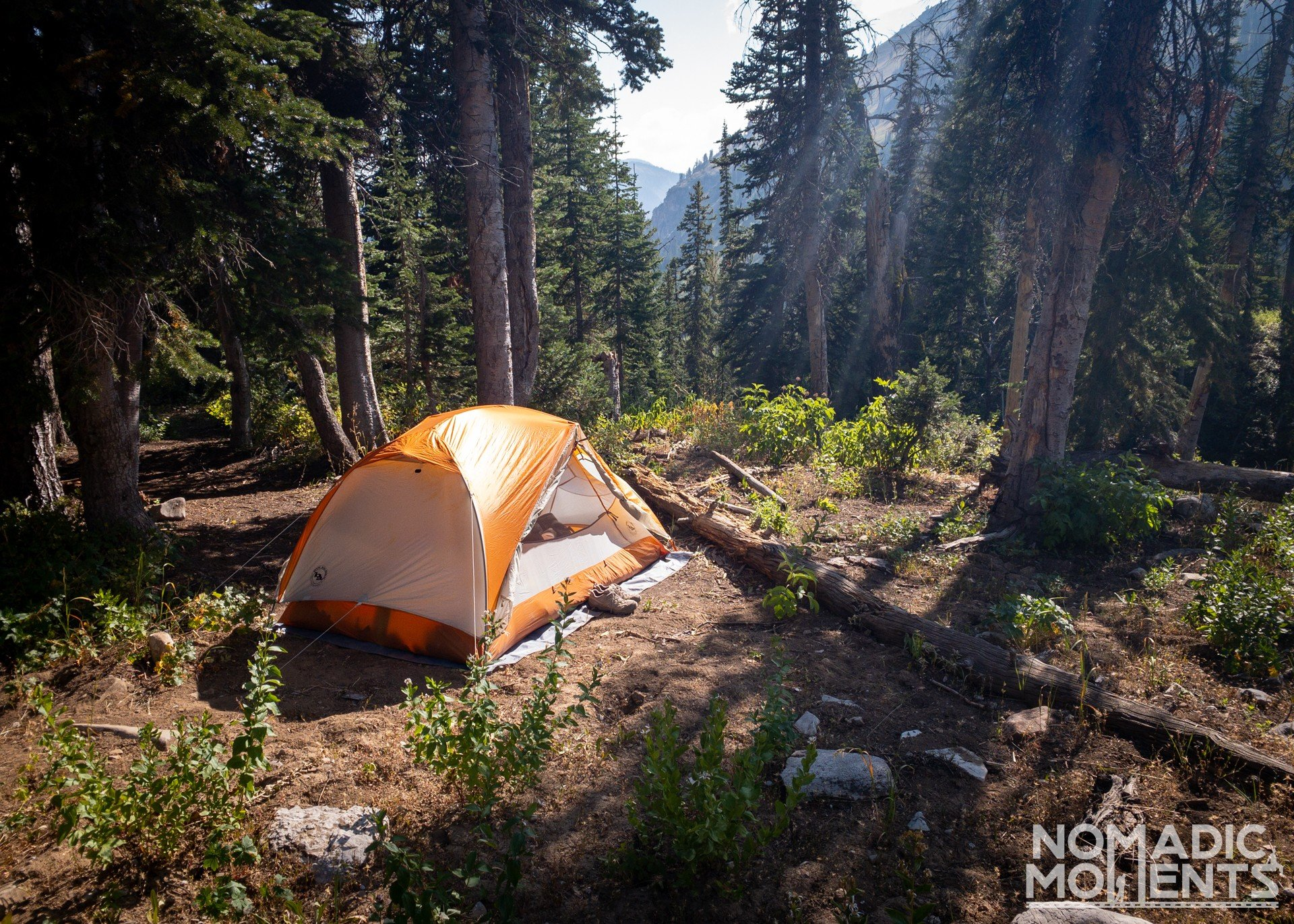 Moose Creek Campsite
