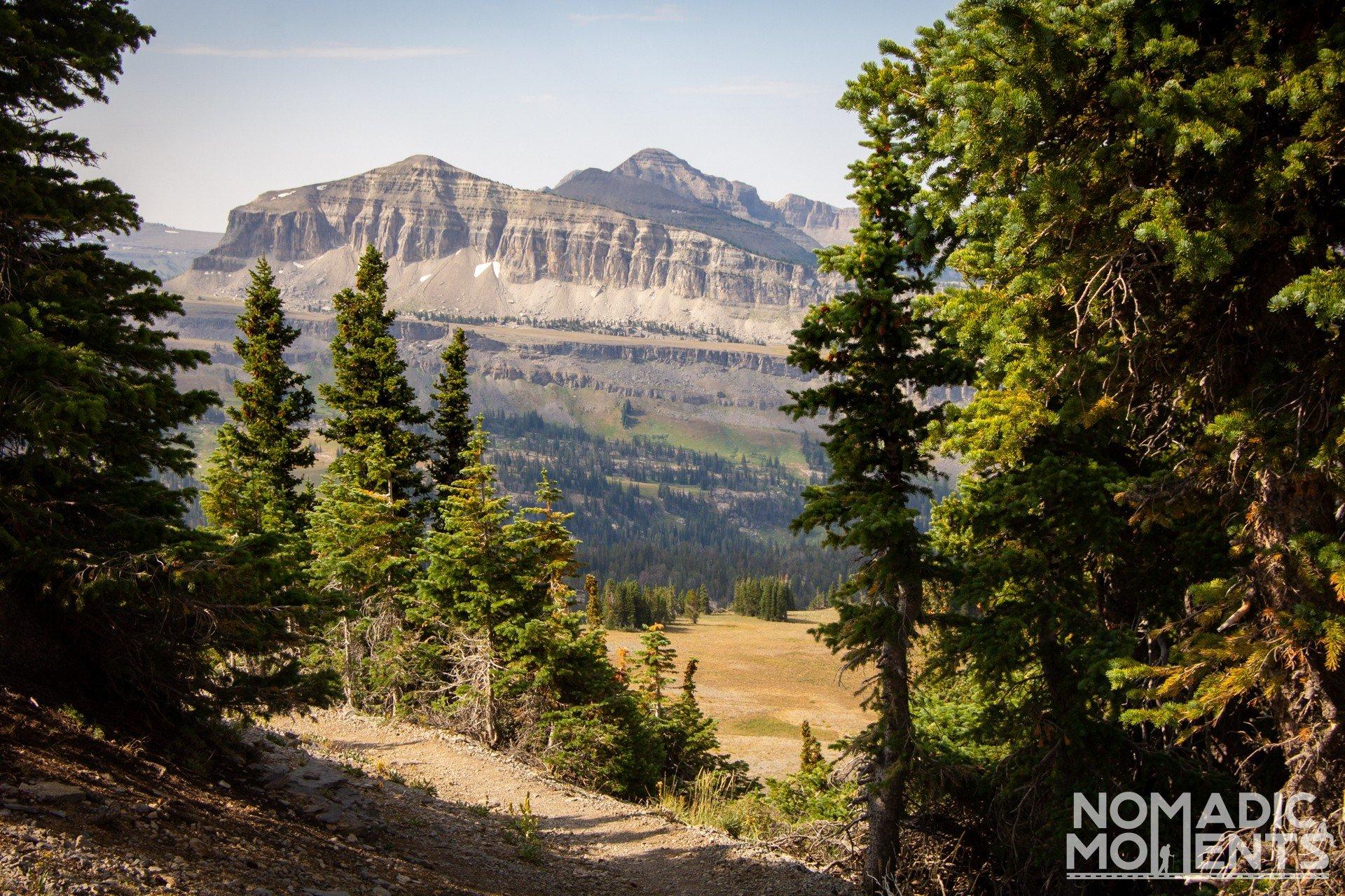 Mt. Meek through the Trees