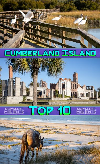 Visiting Cumberland Island Top 10