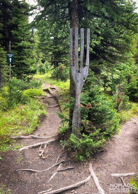 The Fork in the Skoki Trail