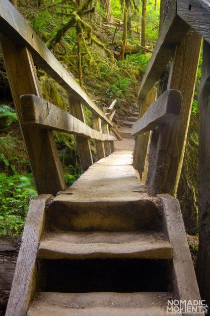 Falls Creek Bridge - Hiking Olympic National Park