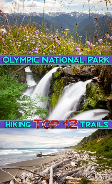 Hiking Olympic National Park Top 12