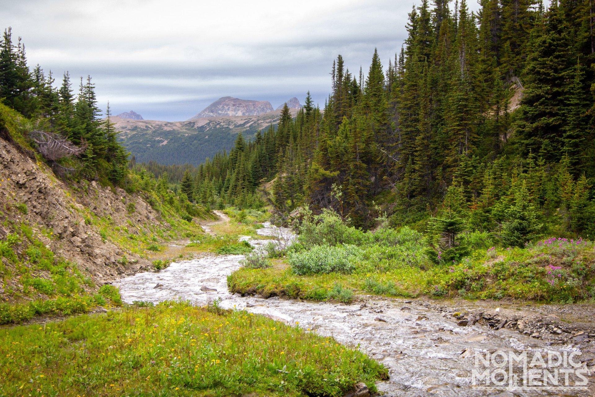 Snowbowl Creek