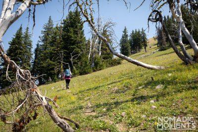 Sky Rim Trail Climb